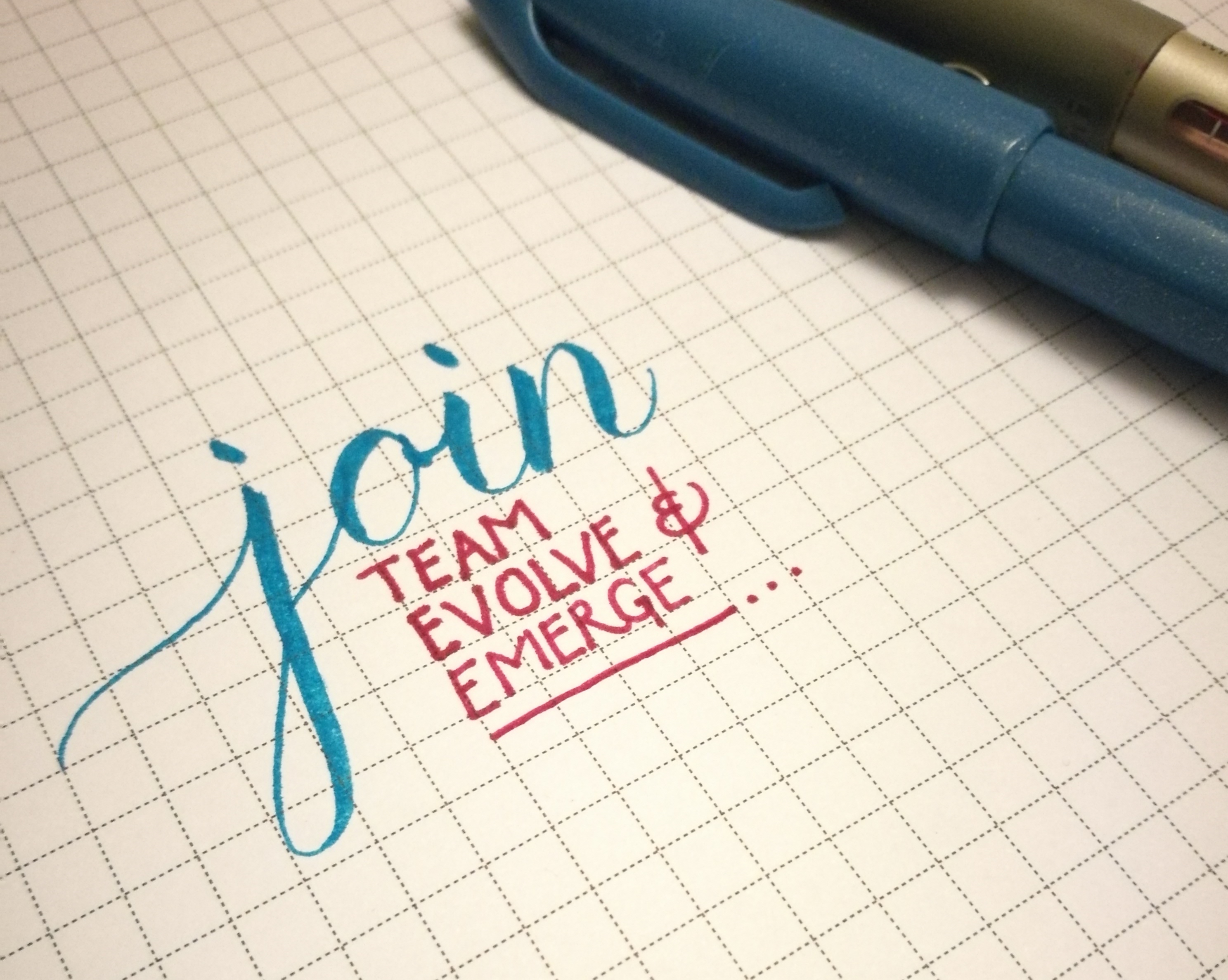 Join Team Evolve & Emerge